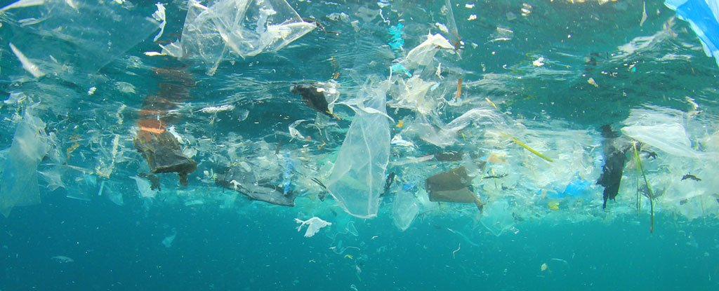 Garbage Patches of Our Oceans